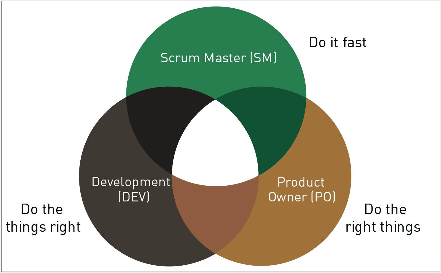 Entwicklungsprojekt Scrum-Rollen