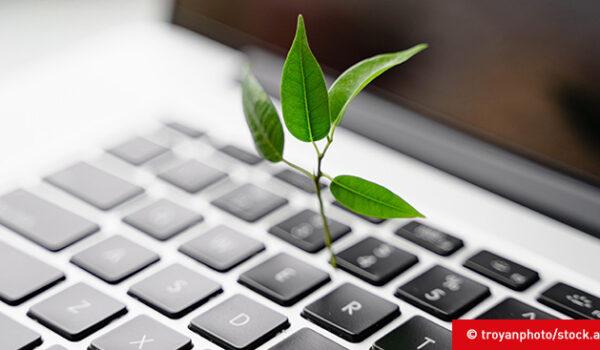 Wie effizient und nachhaltig ist das Internet?